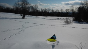 Attempting to sled at Lone Tree Hill